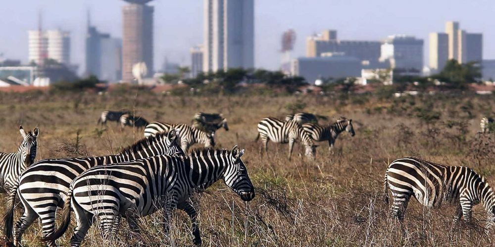 Top Rated Tourist Attractions In Kenya