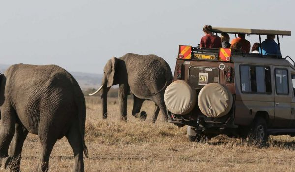 7 Days | 6 Nights Nairobi - Amboseli - Naivasha –Mara Safari